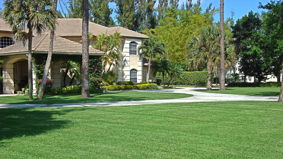 Best Practices for Starting a Lawn Care Business